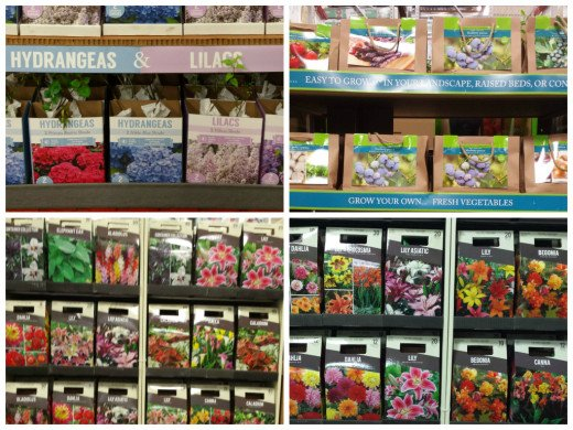 Wide Selection of Plants to Grow