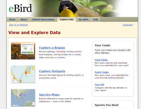 E-Bird search options