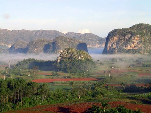 Misty Cuban landscape.