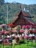 The Royal Flora Ratchaphruek in Chiang Mai, Thailand