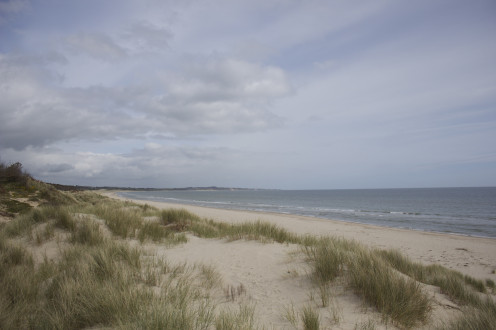 Curracloe Beach: where the D-Day sequence in Saving Private Ryan was filmed