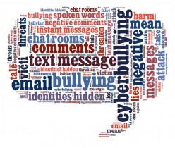 Teenage Cyberbullying