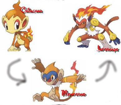 Chimchar Evolution Chart