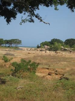 Yala National Park, by 2neus (http://www.flickr.com/photos/motherscratcher/)