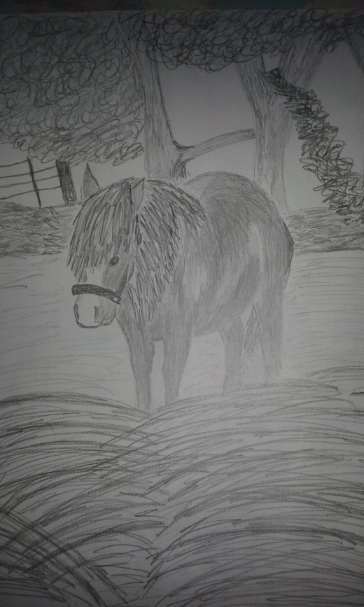 A pencil sketch made using regular paper and HB, 2B, and 5B pencils.