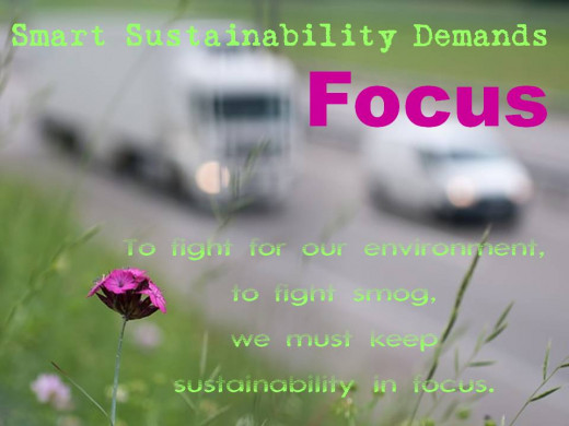 "sustainability posters with blurred highway and a flower in focus with the words ""smart sustainability demands focus"""