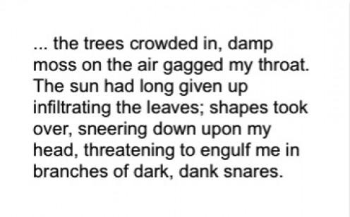 the Darkest Wood