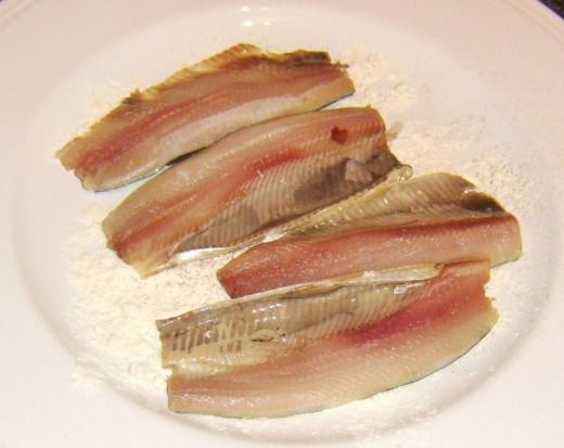 Patting herring fillets in flour