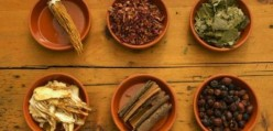 The Benefits of Eastern Medicine