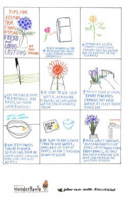 Tips for Keeping Flowers Fresh