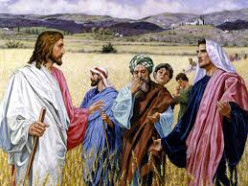 Jesus teaches his disciples what tares and wheat are.
