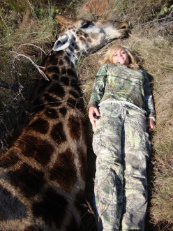 Where is the Pride in Hunting Animals Rebecca Francis ?