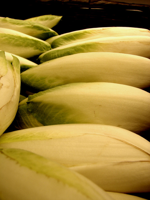 You can grow Belgian endive in your own garden. See the two step process here.