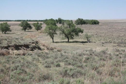 Sand Creek Massacre Site.
