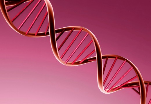 Double helix DNA molecule.