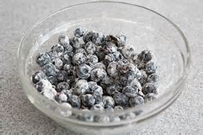 Mix blueberries in flour