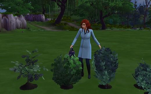Delia waters her garden plants.