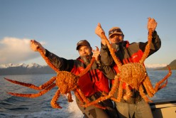 The Crabs of Deadliest Catch