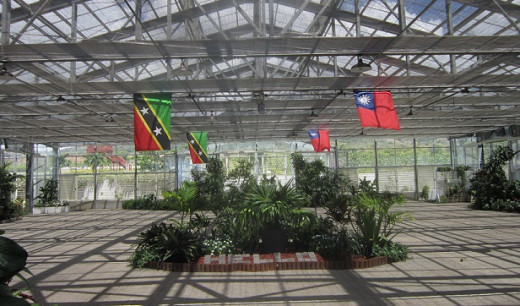 The St. Kitts flag on the left, the Taiwan flag on the right at the main greenhouse entry