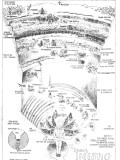 Literary Review of Dante's Inferno