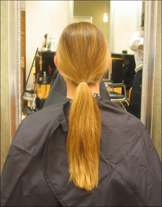 Dry Hair Split Ends