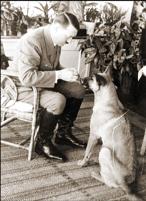 Adolf Hitler with one of his pet dogs.