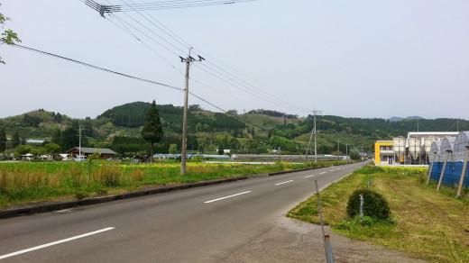 Japanese farmland.