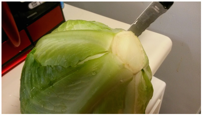 1. Cut 2 inches or so of core out of clean cabbage.