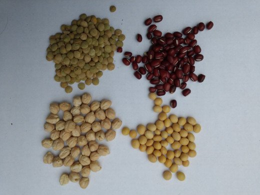 Here are the 4 Beans I plan to grow this summer. From top left and clockwise these are Lentil, Adzuki, Soy and Garbonzo.