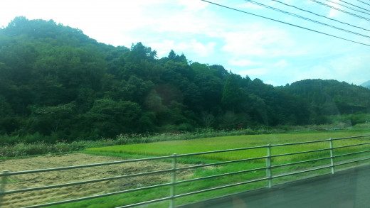 Living in the Japanese countryside is a unique opportunity - but one that still requires patience and support.
