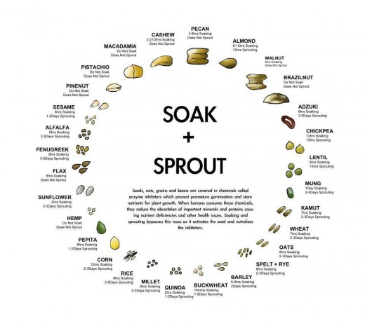A handy dandy chart to the sprouting times. Some beans and nuts need special treatment. My guide is for simple beans.
