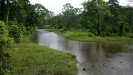 The beautiful river Hollong