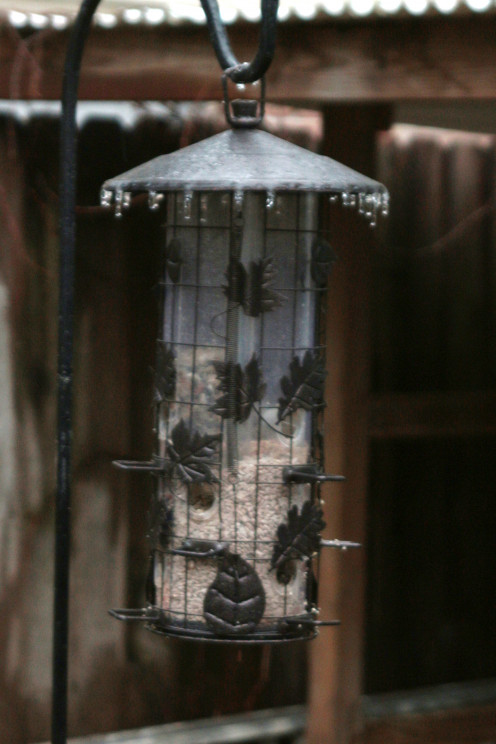 Tube feeder for small birds.