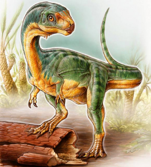 Chilesaurus as depicted by Gabriel Lío.