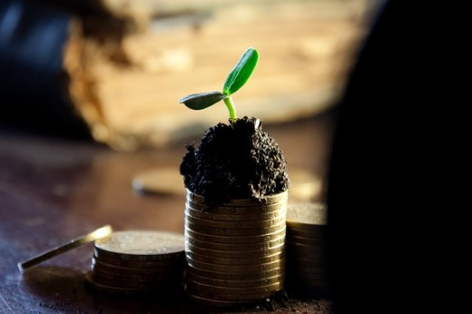 gold coins topped with black soil with a small plant leafing out with two green spouts