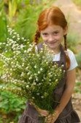 Numerous herbs have the therapeutic potential