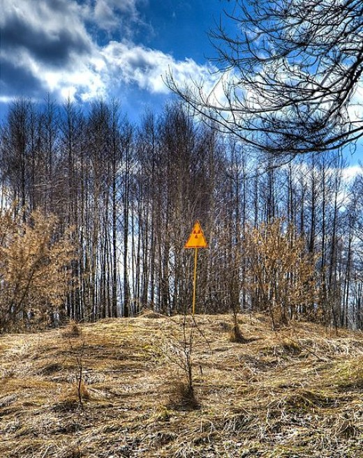 A radiation sign in the Red Forest