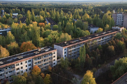 The forest has slowly closed in on Pripyat