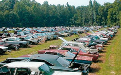 You could live a long time in the secret havens of this salvage yard.