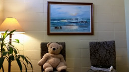 This is what the client sees from the couch!  This happens to be Dr. Ted Bear who has a stomach just like mine!