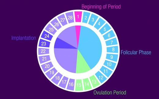 Many people mistake spotting for implantation bleeding. This menstrual calendar will help clear things up.