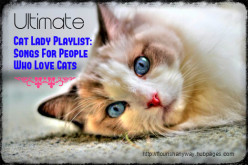 Ultimate Cat Lover's Playlist:  34 Songs for Cat Ladies