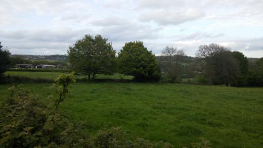 Across the Field G3