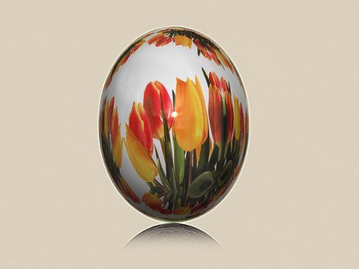 Tulip Painted Egg Shell