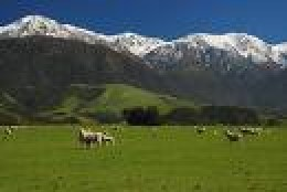 Canterbury's Southern Alps