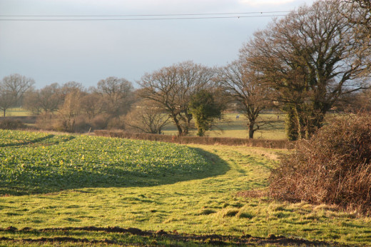 Some of the land under threat by the Mayfield Market Towns development plans