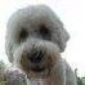 sproquita profile image