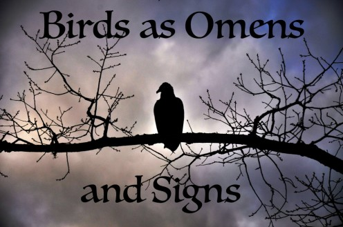 Birds as Omens and Signs