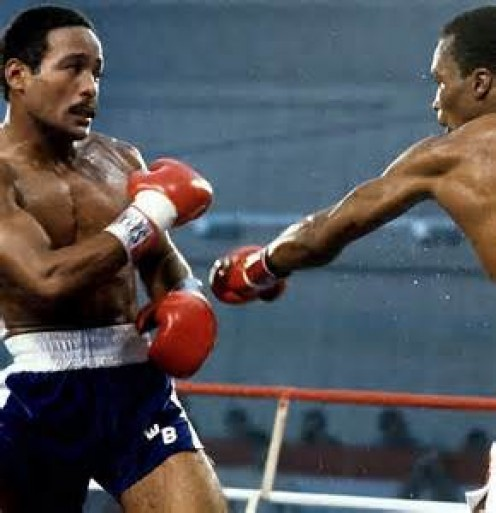 Sugar Ray Leonard knocked out Wilfred Benitez in the final round to win his first title which was the welterweight championship.