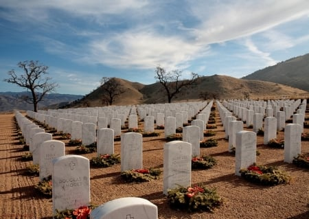 Bakersfield National Cemetery, opened in 2009 with 50 acres, now has 500 acres available in 2015.